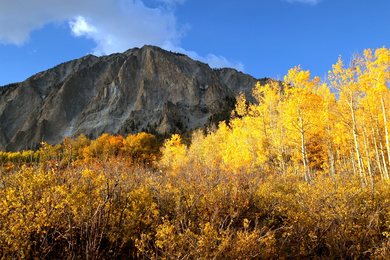 Marcellina Mountain in Autumn