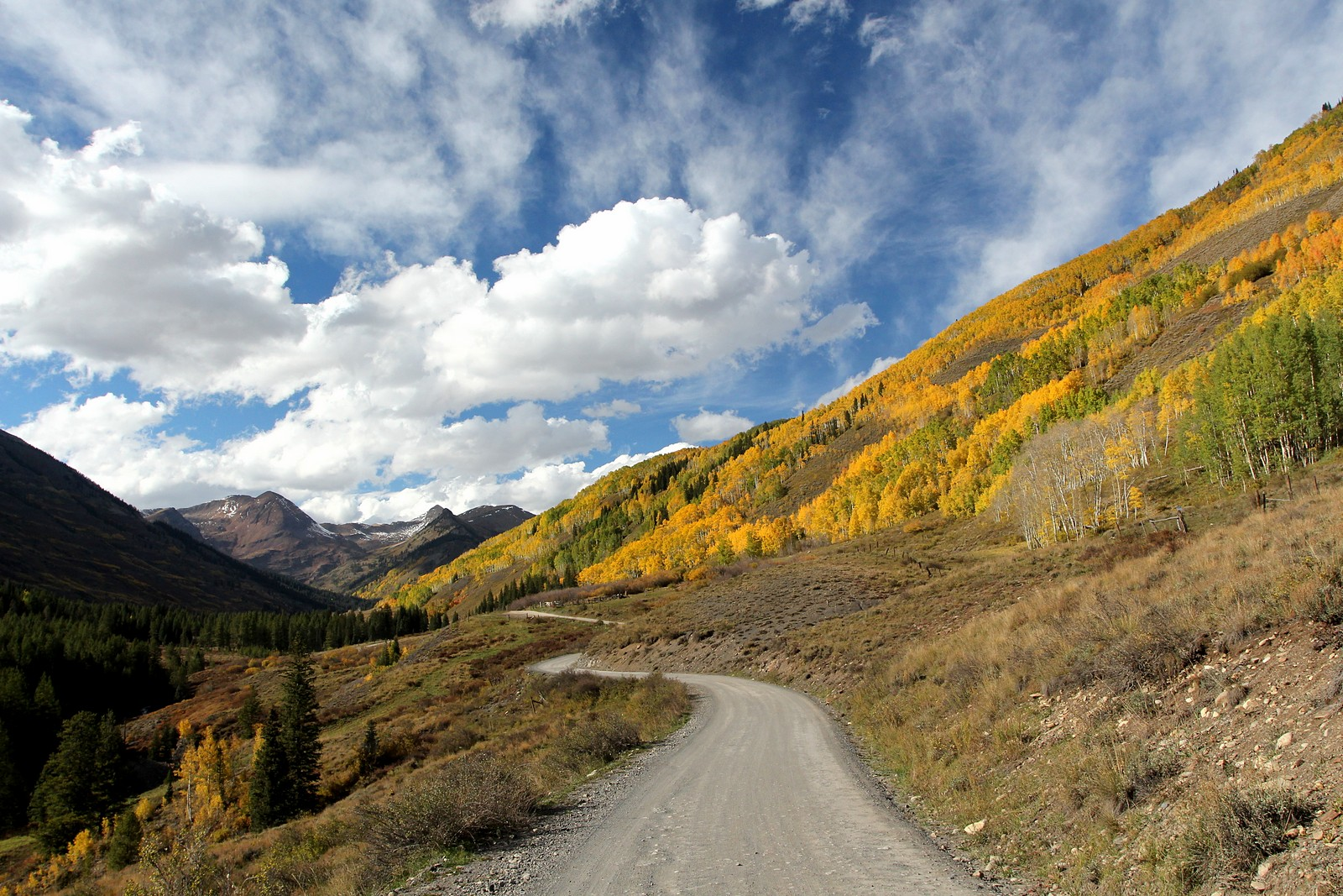 Autumn outside of Crested Butte, CO