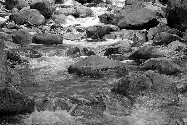 Shannon Creek