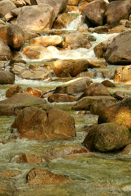 Shannon Creek<br>Squamish, British Columbia<p>Camera: Canon EOS Rebel XT<br>Tamron 28-300 mm VC lens