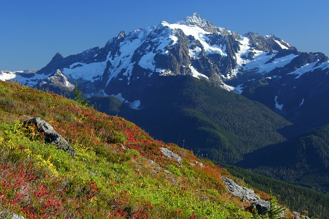 Mt. Shuksan from Yellow Aster Butte