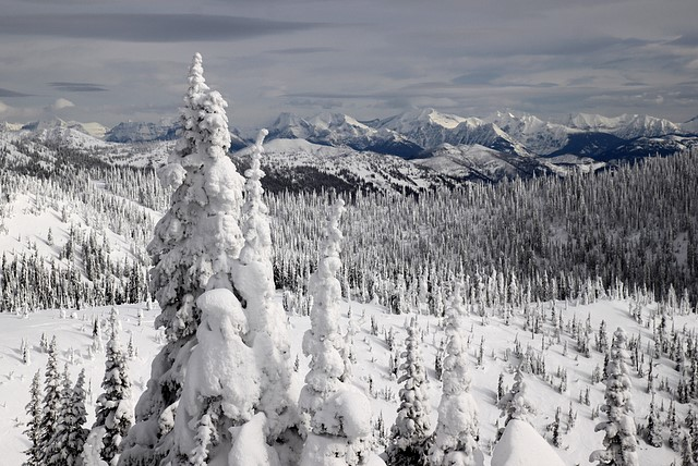 Glacier National Park<br>Seen from Whitefish Mountain Resort<br>Whitefish, Montana<p>Camera: Canon EOS Rebel T1i<br>Tamron 17-50mm f/2.8 lens
