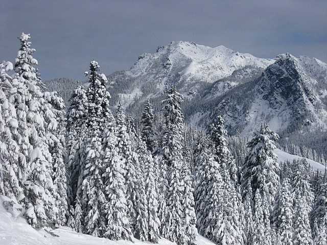 Snoqualmie Pass - View from Summit Central