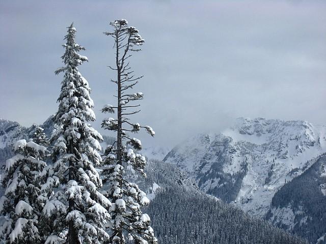 Snoqualmie Pass<br>Washington State<p>Camera: Canon Powershot SD850 IS