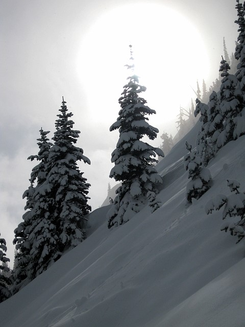 Crystal Mountain Ski Resort<br>Washington state<p>Camera: Canon PowerShot A1000 IS