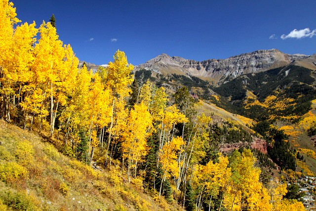 Autumn in Telluride