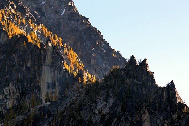 Larches above Colchuck Lake<br>Alpine Lakes Wilderness<br>Washington State<p>Camera: Canon EOS Rebel T1i<br>Canon 55-250mm IS lens