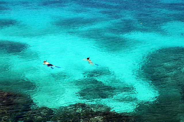 Snorkeling at the Rockhouse Resort<br>Negril, Jamaica<p>Camera: Canon EOS Rebel T1i<br>Tamron 17-50mm f/2.8 lens