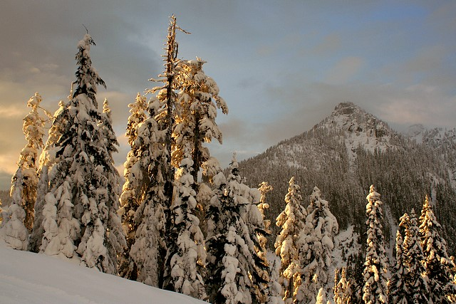 View from Summit West / Snoqualmie Summit