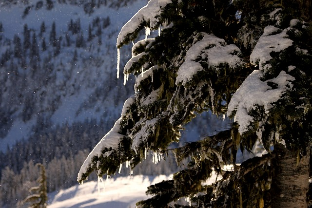 Stevens Pass Ski Area<br>Washington State<p>Camera: Canon EOS Rebel T1i<br>Tamron 28-75mm f/2.8 lens