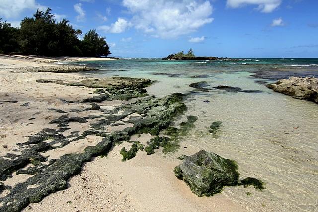 North Shore of Oahu<br>Hawaii<p>Camera: Canon EOS Rebel T1i<br>Tokina 11-16mm f/2.8 lens